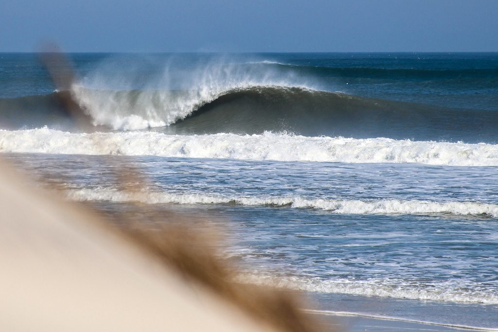 North Carolina. Photo: Shaun Devine