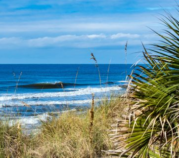 Florida Panhandle, photo of the day, December 7th, 2016, rich brooks