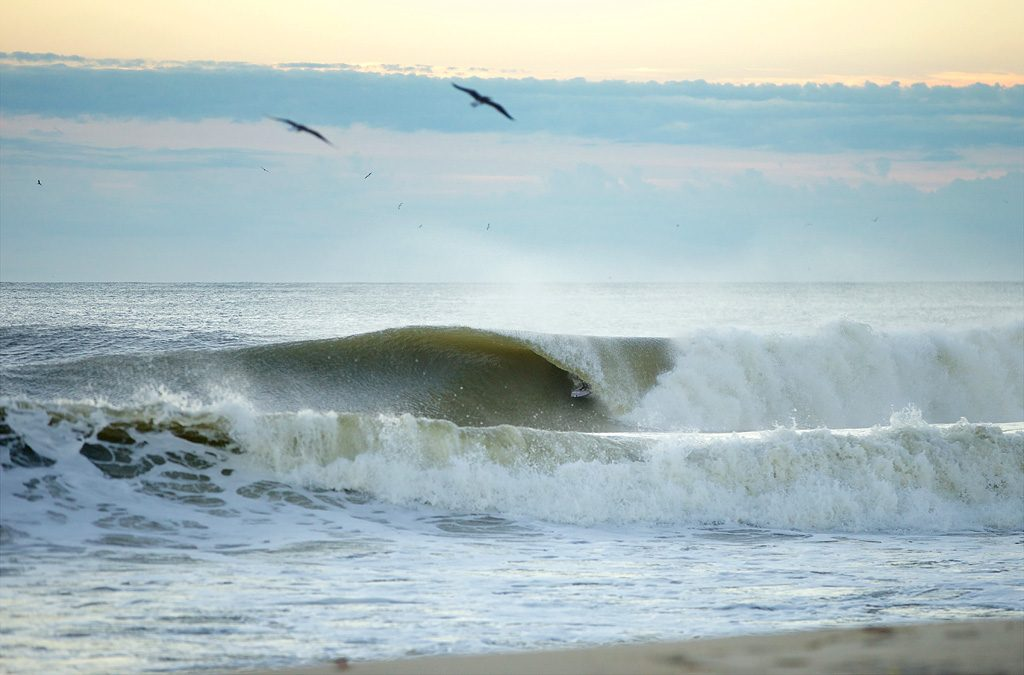 Mike Gleason, New Jersey. Photo: Carter McCoy