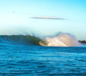 february 1, 2017 florida gulf, ryan mcgary, photo of the day, potd