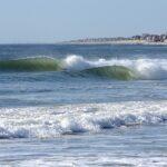 Spring-ing Forward, Mike Vuocolo's Mega Jersey Photo Gallery !